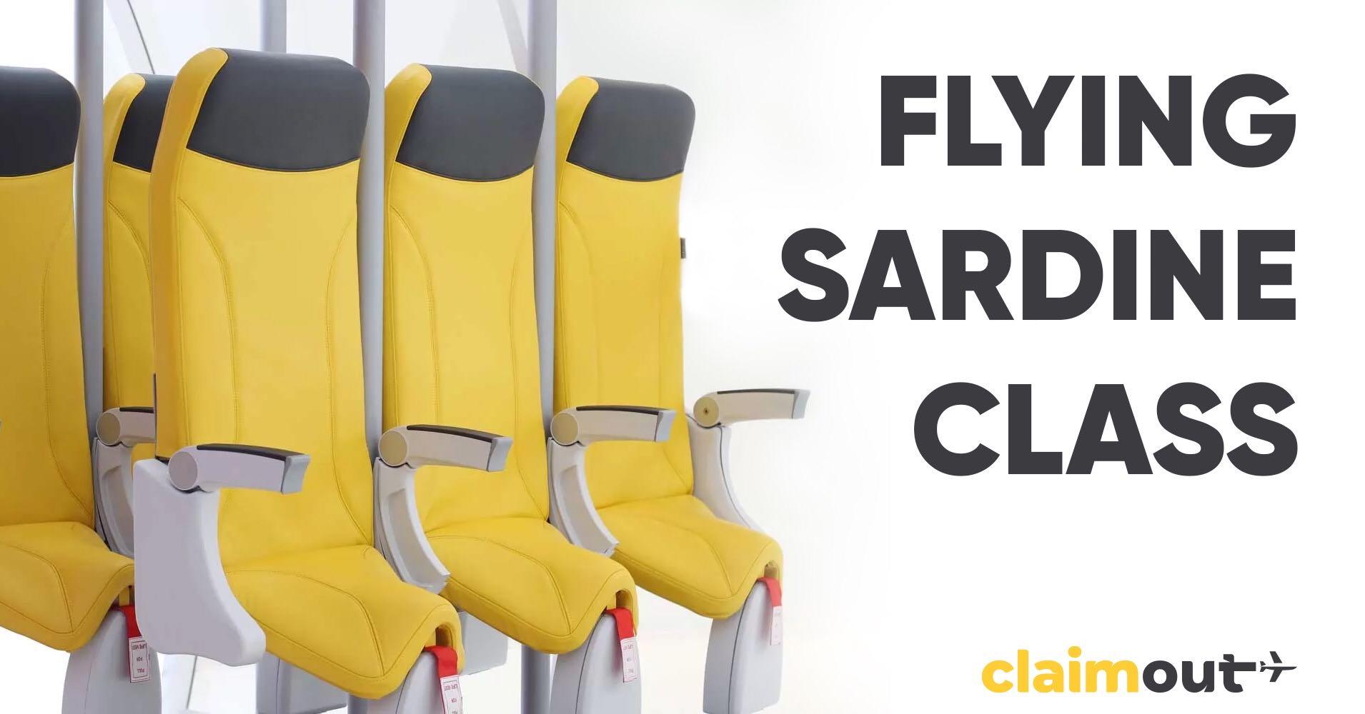 Flying sardine class